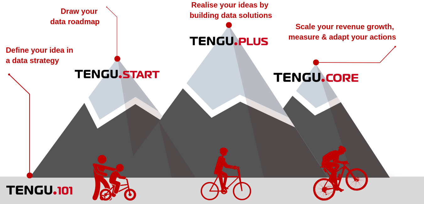 The Tengu Data Solutions Roadmap